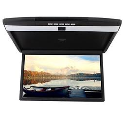 17 inch Widescreen LCD Monitor High Resolution Roof Mount Ca